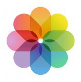 geomis-logo